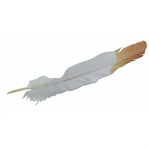 "Plumes imitation aigle 12"" blanc / brun (18)"